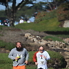 together_with_love_run1 10944