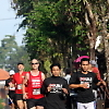 bali_double_road_race 30213